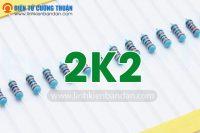 dien tro 2K2 1-4w